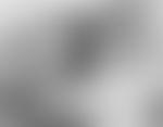 Blurred 490020e8 904d 4341 b672 6187a7d814e4